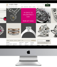 A Detailed Outline On How To Attain Success In Ecommerce Jewelry In Future