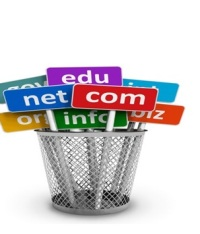 How To Buy Premium Domains And Which Other Features To Avail Of