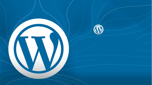 8 Commonly committed mistakes while writing CSS for WordPress theme