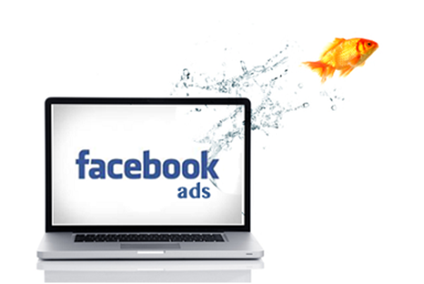 How to create Facebook Ads with Perfect Audience