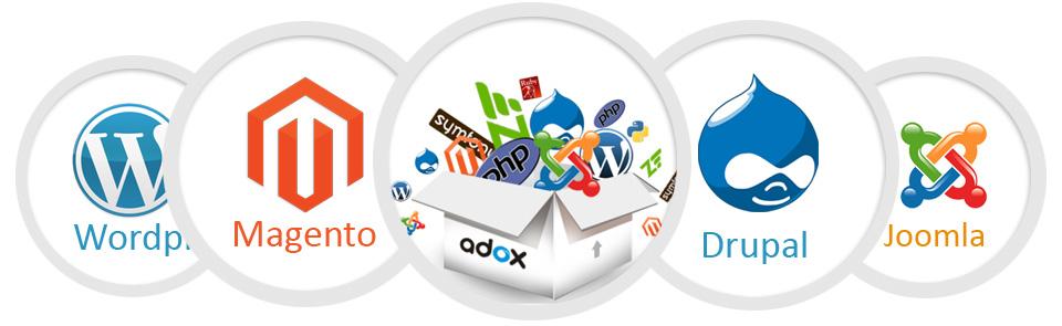 3 Best Programming Language for Web Development