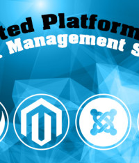 Hosted Platforms or Content Management Systems