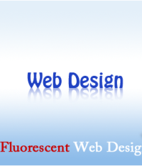 Quality Services from Web Design Company in Delhi