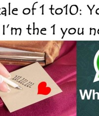 The Love Portfolio of Whatsapp