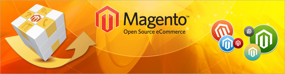 hire an experienced magento developer
