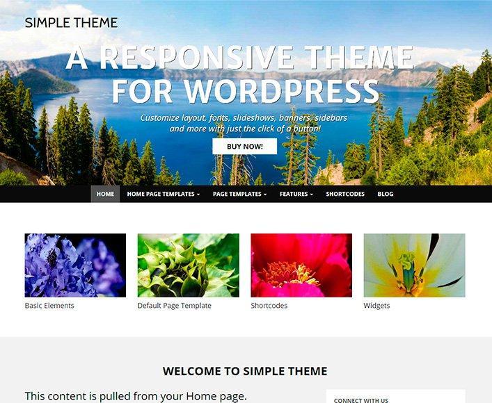 The Simple Free WordPress Theme