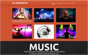 DJ Responsive WordPress Theme2