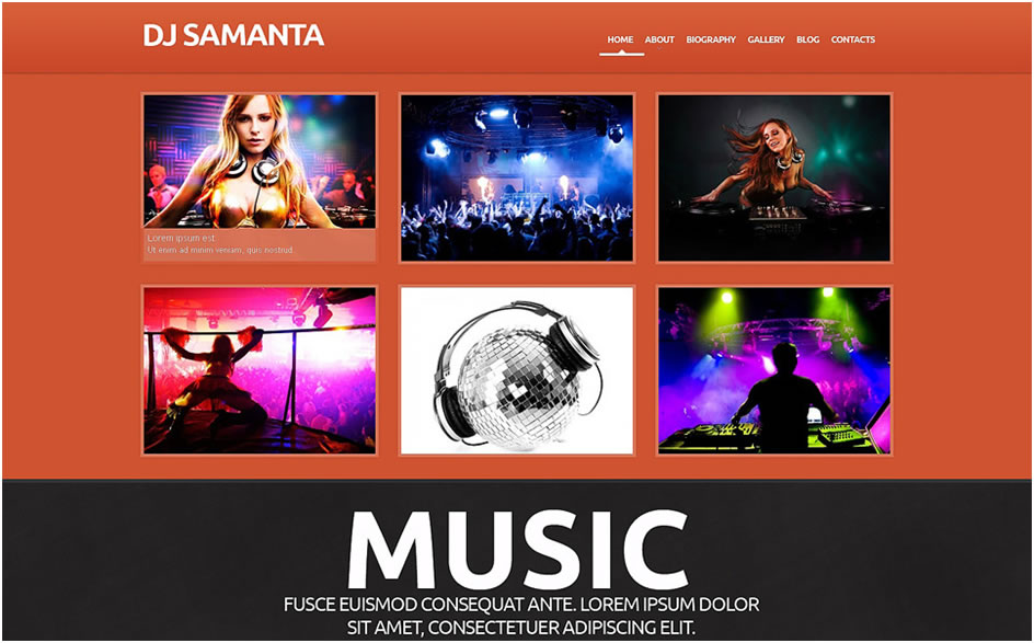 DJ Responsive WordPress Theme2