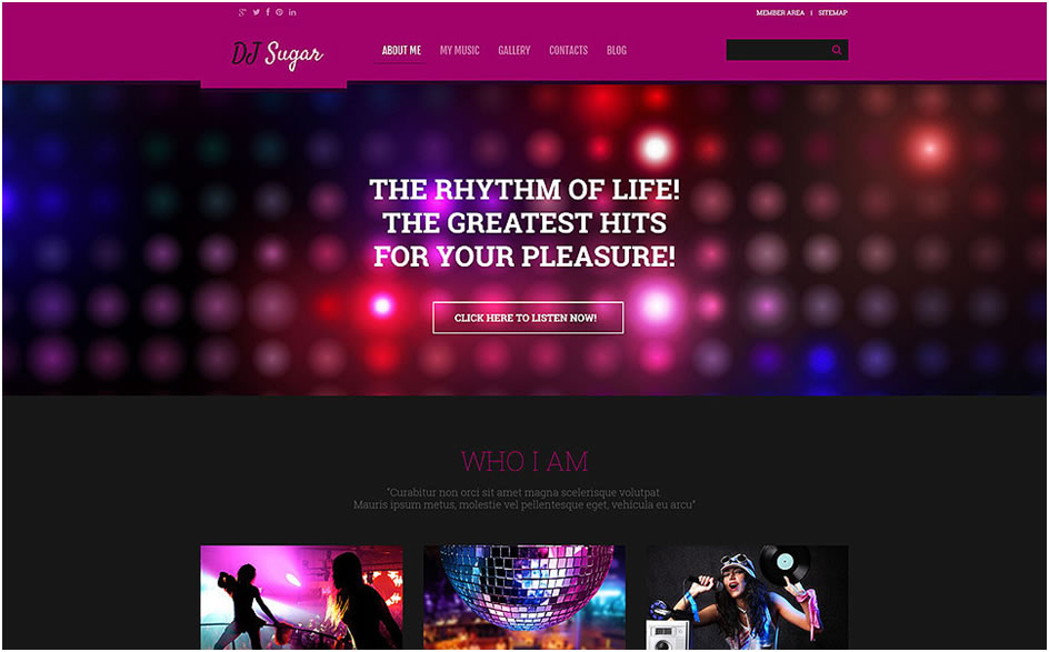 DJ Responsive WordPress Theme3