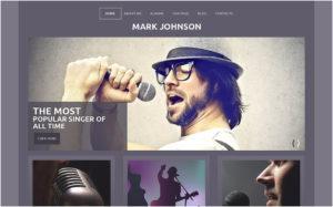 Singer Responsive WordPress Theme2