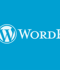The reason why Bean Town SEO firm prefers wordPress
