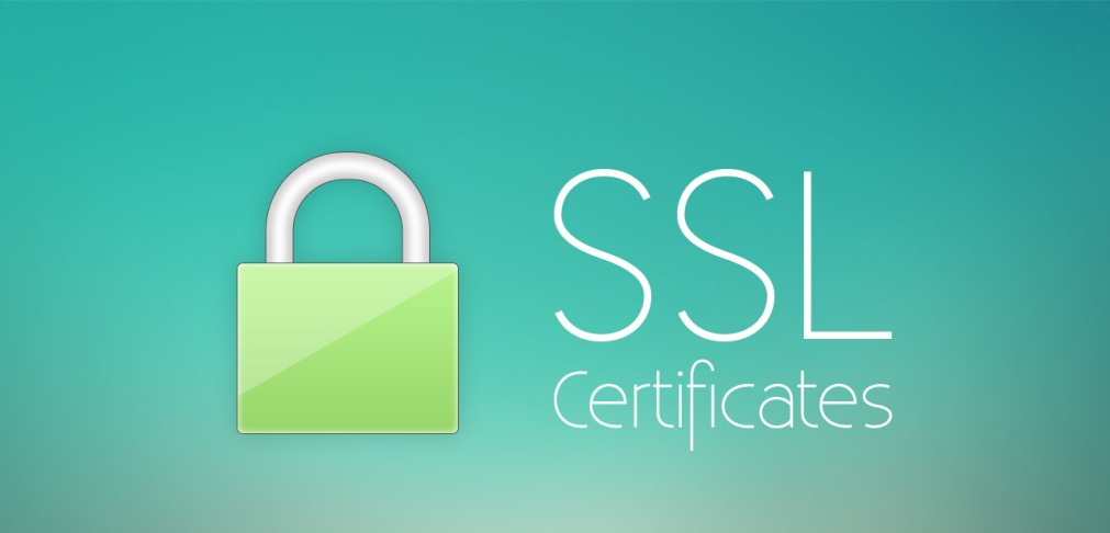 Benefits Of Wildcard Ssl Certificates Web Design In Nigeria