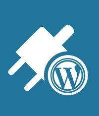 Which WordPress Plugins Should You Use for Better SEO and Social Media Marketing?