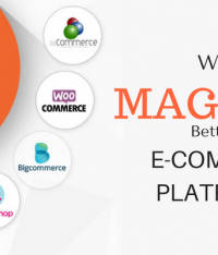 10 Reasons: Why Magento Is Better Than Other eCommerce Platforms