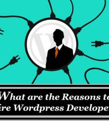 Some Important Do's and Don'ts in WordPress SEO for the Developers
