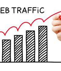 Double your Web Traffic With these effective SEO Tips!