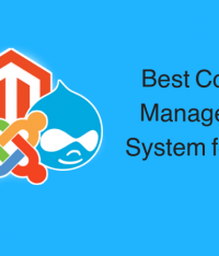 Top 7 Best Content Management System For SEO