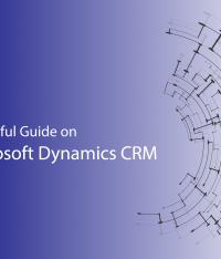 A Helpful Guide on Microsoft Dynamics CRM