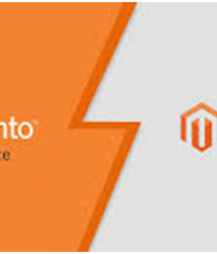 How Magento Development Companies Support Ecommerce Businesses